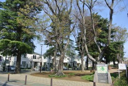 井田こもれび公園の画像1