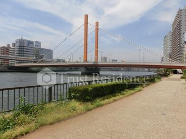 隅田川テラスの画像3
