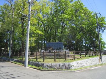 馬堤公園の画像1