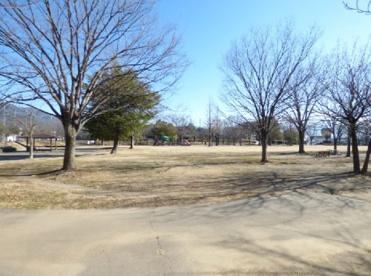 緑が丘スポーツ公園の画像2