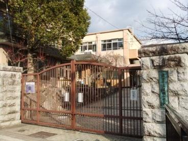 醍醐小学校の画像1