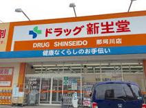 ドラッグ新生堂 那珂川店