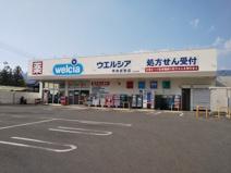 ウェルシア甲府武田店