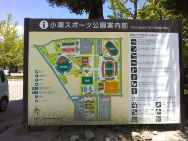 小瀬スポーツ公園の画像3