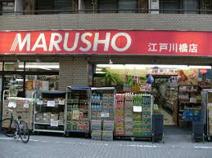 MARUSHO 江戸川橋店 生鮮市場