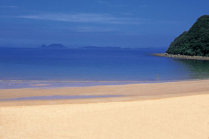 白浜海水浴場の画像