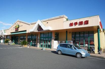 サンユーストアー新手綱店の画像1