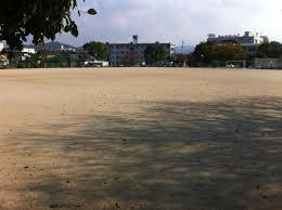 岩戸公園の画像1