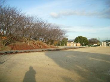 安徳公園の画像3