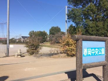 春岡中央公園の画像1