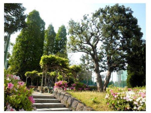目黒区民センター公園の画像