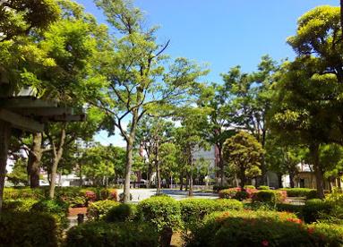 東雲公園の画像1