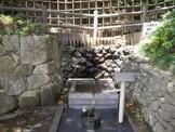 国府台の湧水