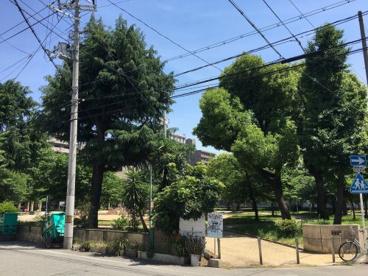愛染公園の画像2