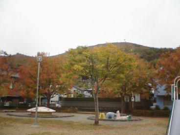 鳩ヶ崎公園の画像1