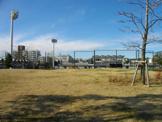 赤羽スポーツの森公園