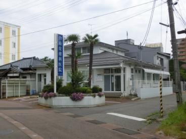 山崎皮膚科医院の画像1