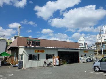 小西屋 太寺店の画像1