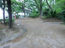中台しいの木公園