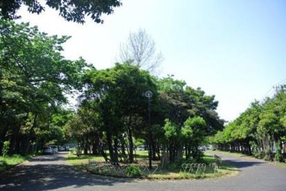 池上新田公園の画像1