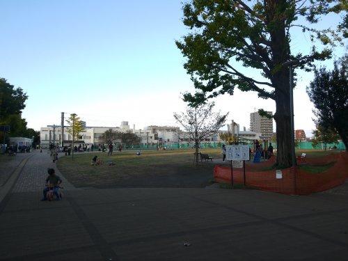 南台いちょう公園の画像