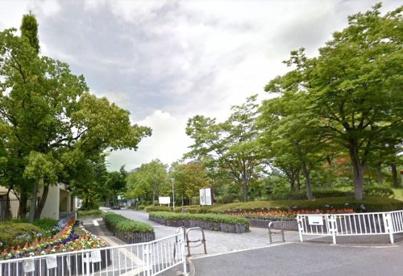 王仁公園の画像1