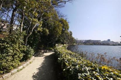 仲ノ池緑地の画像1