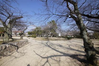 岩ヶ平公園の画像1