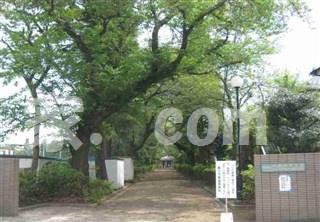 東京都立大泉高等学校附属中学校の画像1