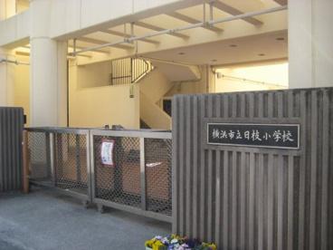 日枝小学校の画像1