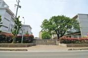 松山中学校