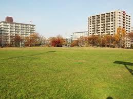 大島小松川公園わんさか広場の画像1