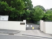 頌栄短期大学