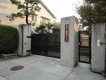 京都市立待鳳小学校の画像1