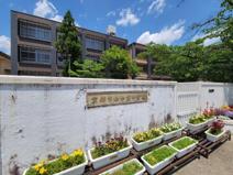 京都市立中京中学校