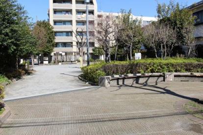 区立徳持ポニー公園の画像3