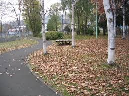 札幌市西野南公園の画像2