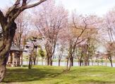 北29条ひかり公園