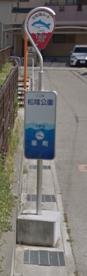 松陰公園(バス停)の画像1