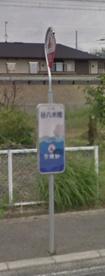 谷八木橋(バス停)の画像1