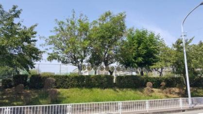 明石市立高丘東幼稚園の画像1