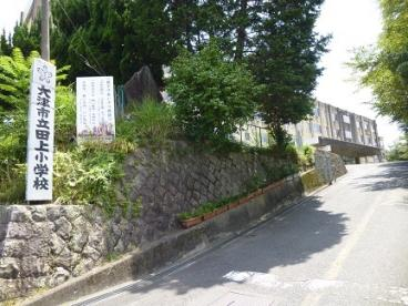 田上小学校の画像1