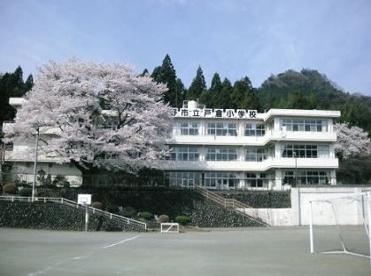 あきる野市立西秋小学校の画像1