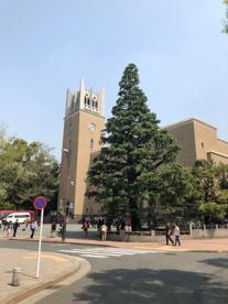 早稲田大学の画像4