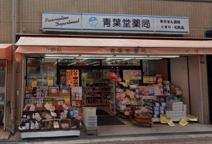 青葉堂薬局北田辺店