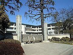 調布市立 深大寺小学校の画像1