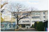 小出小学校