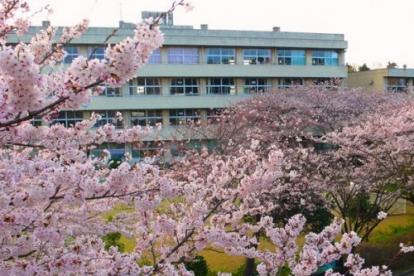 千葉市立源小学校の画像1