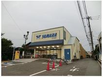 やまか 江の島店