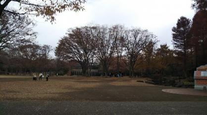 茅ヶ崎市 中央公園の画像2